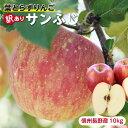【送料無料】長野県産 サンふじ 太陽の光をいっぱい浴びた りんご 訳あり 10kg | 無袋栽培 産地直送 長野 蜜入り 蜜 …