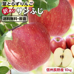 【送料無料】長野産サンふじりんご訳あり10kg