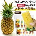 【送料無料】冷凍スティックパイン 100本 国内加工品 | 自然派アイスクリーム アイス 冷凍パイン 冷凍フルーツ 冷凍パイナップル 冷や…