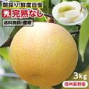 エントリーで更に5倍!【送料無料】長野県産 梨 3kg 秀品 幸水 豊水 二十世紀 南水 完熟 なし 選べる品種|和梨 こだわりの甘い梨 おい…