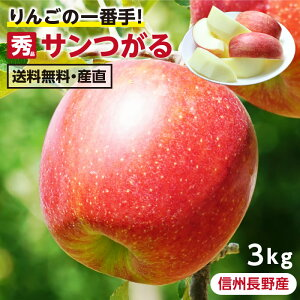 【送料無料】長野県産 りんご 3kg サンつがる 秀品 産地直送   葉とらず栽培 リンゴ 林檎 つがる ツガル 信州 お取り寄せ 旬の果物 フルーツ りんごの一番手 ギフト 贈り物