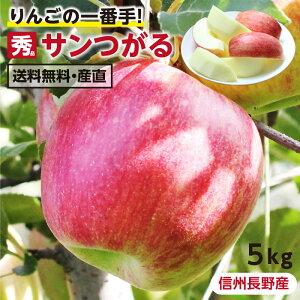 【送料無料】長野県産 りんご 5kg サンつがる 秀品 産地直送   葉とらず栽培 リンゴ 林檎 つがる ツガル 信州 お取り寄せ 旬の果物 フルーツ りんごの一番手 ギフト 贈り物