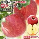【送料無料】長野県産 りんご 訳あり 5kg | サンふじ 産地直送 訳あり 訳 訳有り リンゴ 傷あり 大小さまざま 太陽の光をいっぱい浴び…