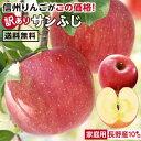 エントリーで更に5倍!【送料無料】長野県産 りんご 訳あり 10kg | サンふじ 産地直送 訳あり 訳 訳有り リンゴ 傷あり 大小さまざま …