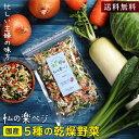 【送料無料】国産 乾燥野菜 私の楽ベジ 100g 5種の国産野菜 ドライ野菜 干し野菜 乾燥野菜ミックス | 乾燥大根 乾燥…