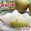【送料無料】訳あり 梨 5kg 長野県産 幸水 / 豊水 / 二十世紀 / あきづき / 新高 / 南水 6品種からお好きな梨を選べる…