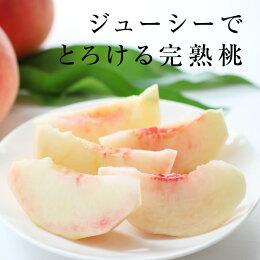 【送料無料】長野産桃(もも)5kg。産地直送にてお届け。秀品!桃(あかつき)お中元内祝贈答ギフト旬の果物