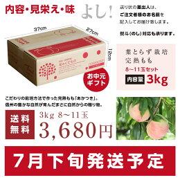 【送料無料】長野産桃(もも)秀品約3kg。産地直送にてお届け。桃(あかつき)お中元内祝贈答ギフト美味しいフルーツ旬の果物