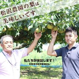 【送料無料】完熟梨(なし)幸水・豊水5kg。長野より産地直送。こだわりの梨(なし)