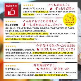 【送料無料・冷凍】市田柿(干柿・干し柿)800gご自宅/お得用市田柿コンクール第2位