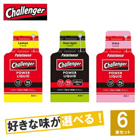 Challenger(チャレンジャー) POWER LIQUID(チャレンジャー・パワーリキッド)選べる3味6個セット【ジェル トレイルランニング トレラン ランニング 行動食 補給食 健康食 おいしい マラソン エネルギーゼリー】#select