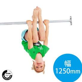 DIY 屋外 家庭用遊具作成用パーツ 「はらっぱギャング 鉄棒 1250mm(ステンレス製)」 自作
