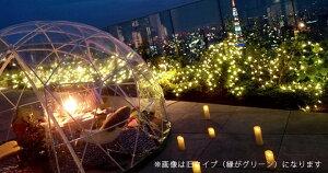 【ドーム型ビニールテント】「GardenIglooガーデンイグルー」[pt_sale][pt_sale2]