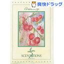 センテーション サシェN クランベリー(45g)【センテーションサシェ】