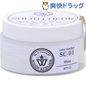 ソリッドカラー ホワイト(90g)【ワシン】