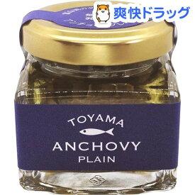 【訳あり】TOYAMA ANCHOVY トヤマンチョビ プレーン(40g)【ouy_m5】