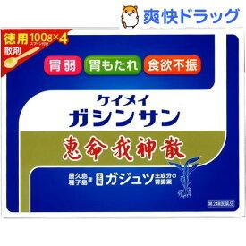 【第2類医薬品】恵命我神散(400g)【恵命我神散】