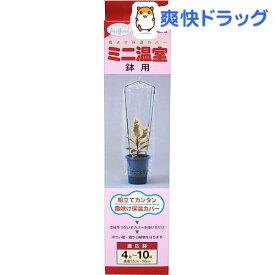 渡辺泰 ミニ温室 鉢用 4〜10号鉢用(1セット)