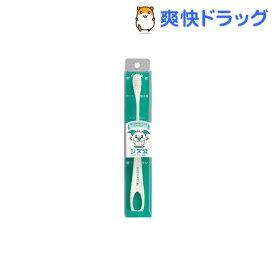 シズ公 歯ブラシ ラージヘッド(1本入)【シズ公】