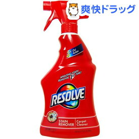 ライゾール リゾルブ カーペットクリーナー(650ml)【ライゾール】
