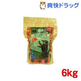 ロータス アダルト ラムレシピ 小粒(6kg)【ロータス】