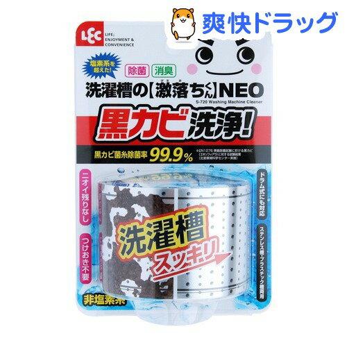 洗濯漕の激落ちくん NEO(80g)【激落ち(レック)】