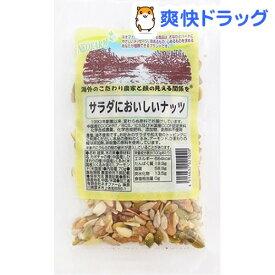 ネオファーム サラダにおいしいナッツ(70g)【NEOFARM(ネオファーム)】