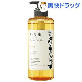 いち髪 ナチュラルケアセレクト モイストシャンプー ポンプ(480ml)【いち髪】