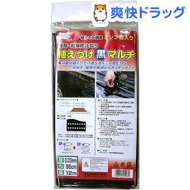 渡辺泰 植えつけ黒マルチ 0.03*0.95*12m(1枚入)