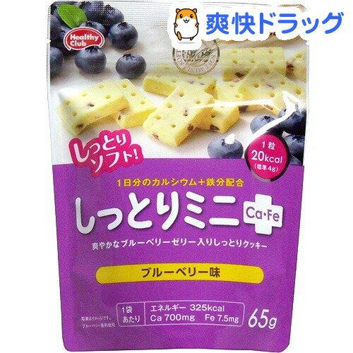 しっとりミニCa-Fe ブルーベリー味(65g)【ヘルシークラブ】