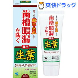 小林製薬 薬用歯みがき 生葉(100g)【生葉】