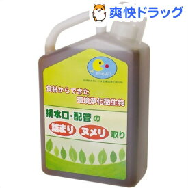 えひめAI-1 環境浄化微生物 排水口・配管の詰まり・ヌメリ取り(1L)