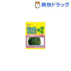 コメット マリモブラザーズ コケ抑制マリモ(1コ入)【コメット(ペット用品)】