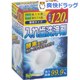 アドグッド 入歯洗浄剤(120錠)【クレッシュ(Clesh)】