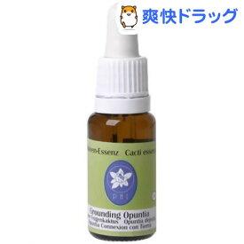 グランディング・オプンティア(15ml)【コルテPHI】
