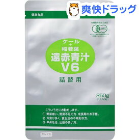 遠赤青汁 V6 詰替用(1250粒)【遠赤青汁】