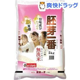 令和元年産おくさま印 宮城県産 つや姫 無洗米 胚芽一番(5kg)【おくさま印】