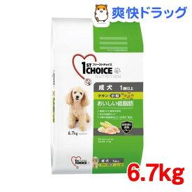 ファーストチョイス 成犬 1歳以上 小粒 チキン(6.7kg)【1909_pf01】【ファーストチョイス(1ST CHOICE)】