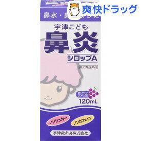 【第(2)類医薬品】宇津こども鼻炎シロップA(120ml)【宇津こどものお薬】