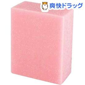 ナニワ SAKU 汚れ・サビ取り消しゴム PA-2010(1個)【ナニワ】