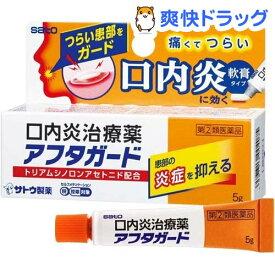 【第(2)類医薬品】アフタガード(セルフメディケーション税制対象)(5g)