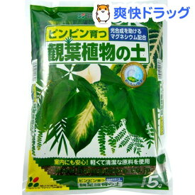 花ごころ 観葉植物の土(5L)