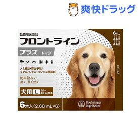 フロントラインプラス 犬用 L 20〜40kg未満(6本入)【フロントラインプラス】