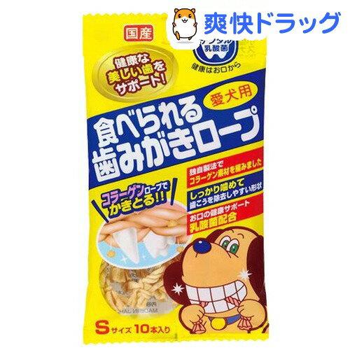 愛犬用 食べられる歯みがきロープ Sサイス(10本入)【歯みがきロープシリーズ】