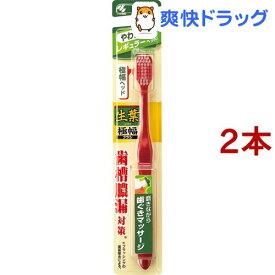 生葉 極幅ブラシ レギュラー やわらかめ(1本入*2コセット)【生葉】