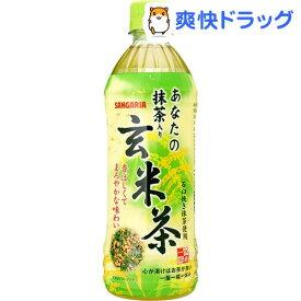 サンガリア あなたの抹茶入り玄米茶(500mL*24本入)【あなたのお茶】[ペットボトル]