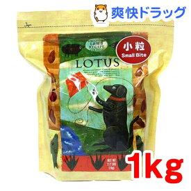 ロータス アダルト ラムレシピ 小粒(1kg)【ロータス】[ドッグフード]