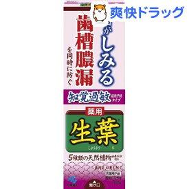 薬用生葉s 知覚過敏症状予防タイプ(100g)【生葉】