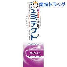 薬用シュミテクト 歯周病ケア 高濃度フッソ配合(1450ppm)(22g)【シュミテクト】