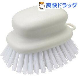 お風呂のブラシ W(1コ入)【マーナ】